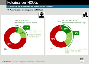 results of a survey by the french Ministry of Education